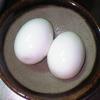 050801_egg