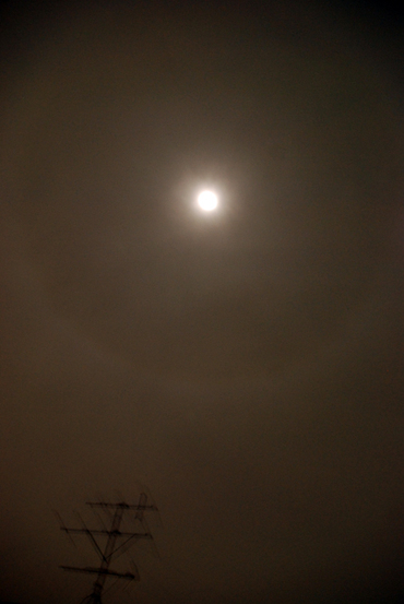 100130_bluemoon2
