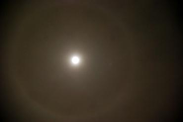 100130_bluemoon2b