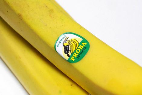 110127_banana
