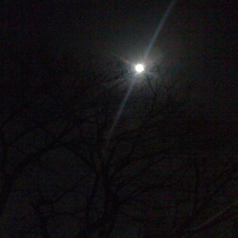 Moon_110319