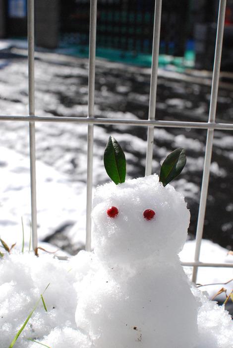 20120124_snow